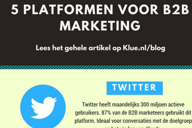 5 Social Media Platformen B2B marketing [Infographic]